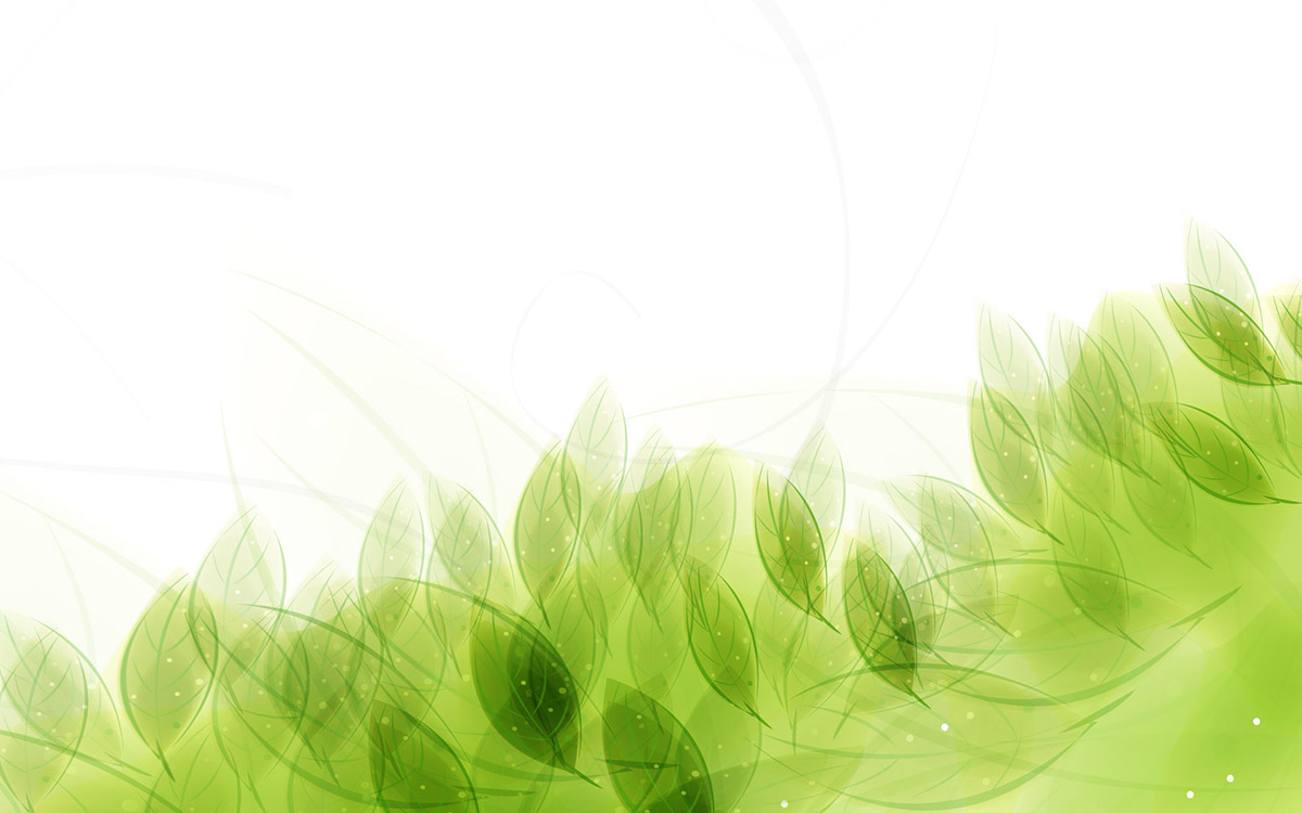 light green leaves background - photo #11